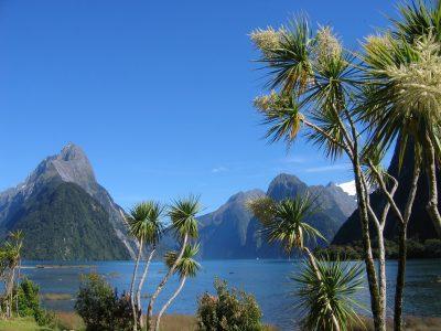 Milford Sound - Fjordland - Neuseeland