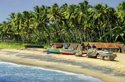 Palmenstrand - Goa - Indien