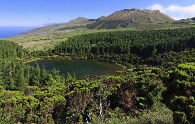 Pico - Azoren - Portugal