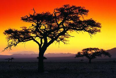 Namibia Familienurlaub - Sonnenuntergang - Ebene