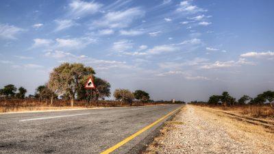 Straße in Namibia - Caprivi - Namibia