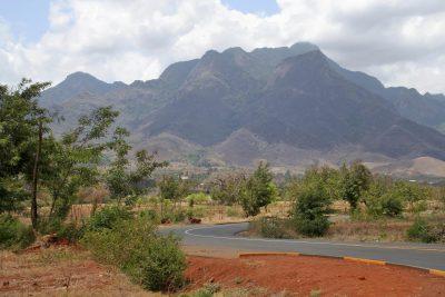 Tansania Safari -Usambara Berge - Tansania