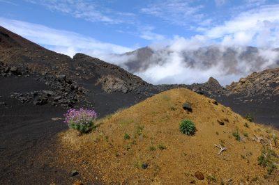 Gruppenreise Kapverdische Inseln -Vulkanlandschaft - Insel Fogo - Kap Verde