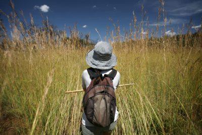 Rundreise durchs Suedliche Afrika - Suedafrika Gruppenreise - Wanderung - Krueger National Park - Suedafrika