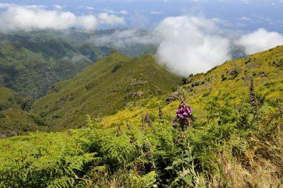 Wanderung - Madeira - Portugal
