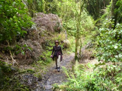 Wanganui - Nordinsel - Neuseeland