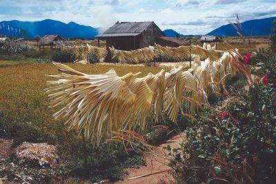 Laos Vietnam Gruppenreise -Wohnhaus - Vietnam