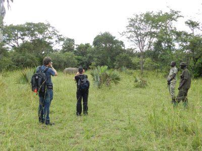 Uganda Gruppenreise - Uganda Rundreise -Ziwa - Nashorn Schutzgebiet - Uganda