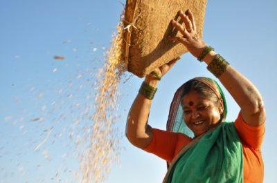 Indien Rundreise - Frau in der Landwirtschaft aus dem Navdanya Projekt - Dehradun