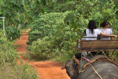 Thailand Rundreise - ThailandElefanten Tour - Khao Sok National Park - Thailand