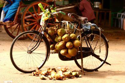 Radreise Indien -Indien Aktivreise -Indien Gruppenreise -Fahrrad - Indien