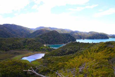Abel Tasman Track - Suedinsel - Neuseeland