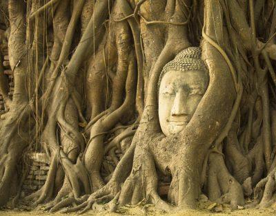 Ayuhhtaya - Tempel - Thailand
