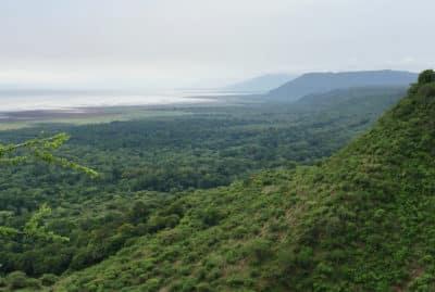 Tansania Rundreise und Badeurlaub auf Zanzibar -Bergregenwald - Udzungwa Mountains-Nationalpark Tansania