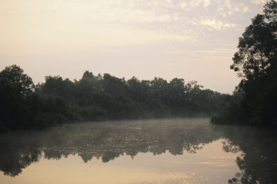 Borneo Rundreise -Borneo individuell -Gruppenreise Borneo -Flusslandschaft - Mulu National Park - Malaysia