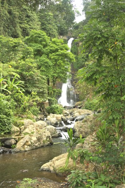 Git Git Falls - Bali - Indonesien