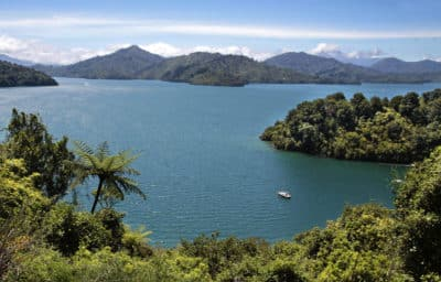 Marlborough Sounds - Suedinsel - Neuseeland