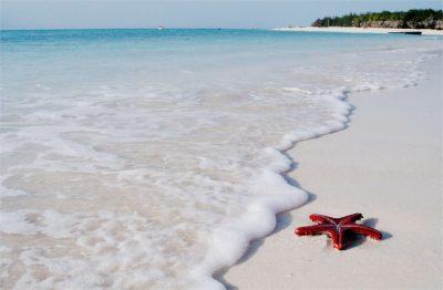 Traumstrand - Süd-Zanzibar - Zanzibar