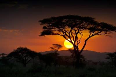 Sonnenuntergang - Safari in der Serengeti - Tansania